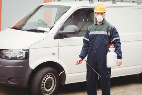 pest control company brighton